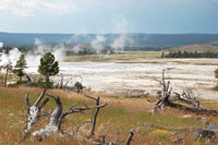 At Norris Geyser Basin, steam rises through the cracks and fissures.