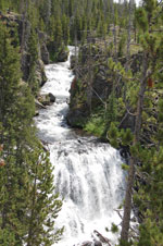 The Kepler Cascades on the Firehole River drop 100 feet in several tiers.
