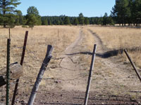 The Beale Wagon Road can still be found near Interstate 40 in Arizona.