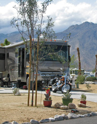 Mountains from a backdrop at The Springs at Borrego RV Resort.