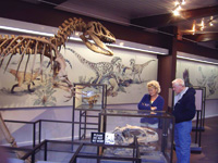 Exhibits at Dinosaur National Monument.