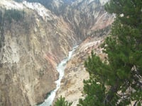 Water cascades through the Grand Canyon of the Yellowstone.