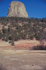 Devils Tower looms beyond an area inhabited by prairie dogs.