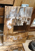 Extensive dry rot can endanger anyone walking on the floor.
