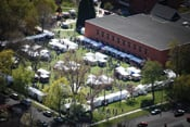 The campus of Lewis-Clark State College hosts an art fair during the Dogwood Festival.