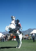 Gunslingers will stage western shootouts at the Festival of the West at WestWorld in Scottsdale.