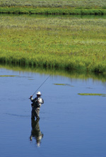 Henry's Fork of the Snake River is popular for fly-fishing.