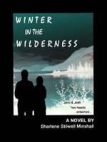 b2ap3_thumbnail_winter-in-wilderness.jpg