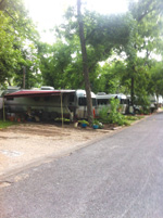These RVs are at Pecan Grove RV Park in Texas for an extended stay.