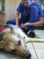 Jerry receives treatment in Santa Fe, New Mexico.