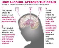 b2ap3_thumbnail_alcohol-brain.jpg