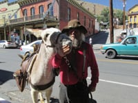 Local color is not hard to find in Virginia City.