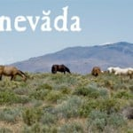 Nevada Promotes Rural Tourism in 2014