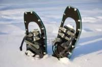 b2ap3_thumbnail_snowshoeing.jpg