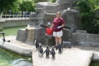 b2ap3_thumbnail_ARLINE-Trainer-with-penguins.jpg