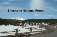 b2ap3_thumbnail_ARLINEShoshone-National-Forest.jpg