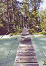 The Chilkoot Trail takes hikers across this bridge and many other obstacles.