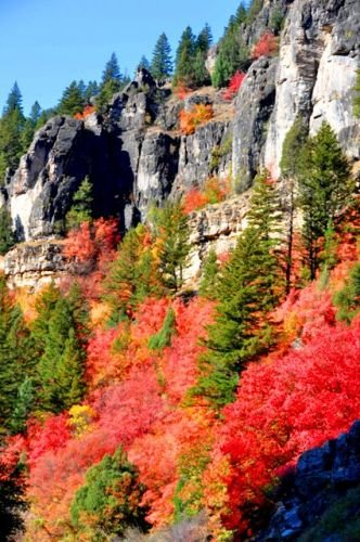 logan-Canyon-Color.jpg