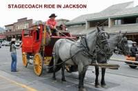 b2ap3_thumbnail_ARLINE-Stagecoach-in-Jackson-800x533.jpg