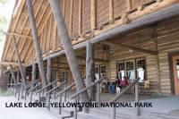b2ap3_thumbnail_ARLINELake-Lodge-Yellowstone-NP-800x533.jpg