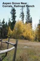 b2ap3_thumbnail_ARLINEAspen-Grove-Railroad-Ranch.jpg