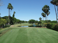 Picturesque McAllen Country Club is situated next to a bird sanctuary.