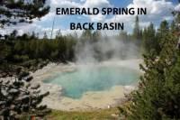 b2ap3_thumbnail_ARLINE-Emerald-Spring-Back-Basin.jpg