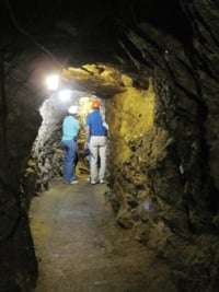 Tourists venture into the Double Eagle Gold Mine to begin the Argo tour.