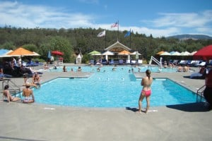 You can swim and sip wine at the Francis Ford Coppola Winery.