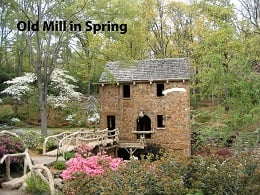 Old Mill Spring