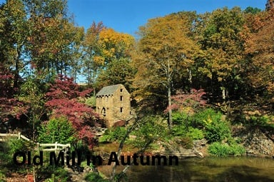 Fall Shot Old Mill