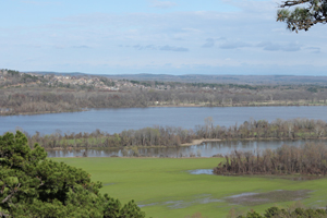 Arkansas River Valley from Overlook