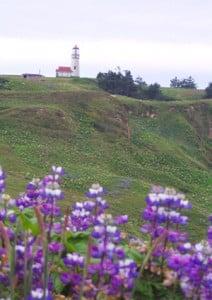 Cape Blanco Light Station