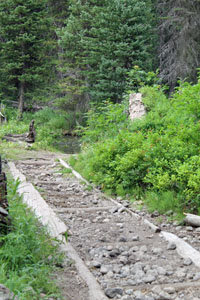 Horse Trail to Union Falls
