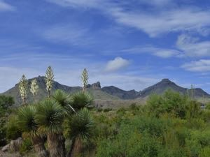 View from Panther Junction in Big Bend National Park Texas