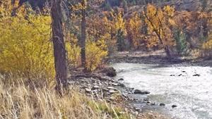 Mountain Stream Route 12