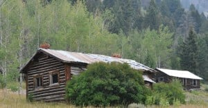 A Couple Of Old Miners Cabins