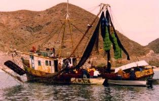Observing a shrimp boat in Baja, Mexico.