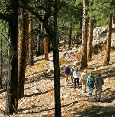 Grand Canyon National Park NR Cliff Springs Trail 0130-