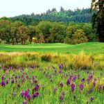 Visit Oregon`s Mallard Creek in the Willamette Valley