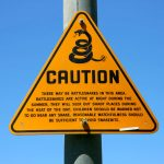 What You Need To Know About The Dangers Of Rattlesnakes