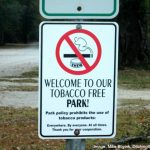 Is A Campground Smoking Ban Coming To Your Favorite Park?