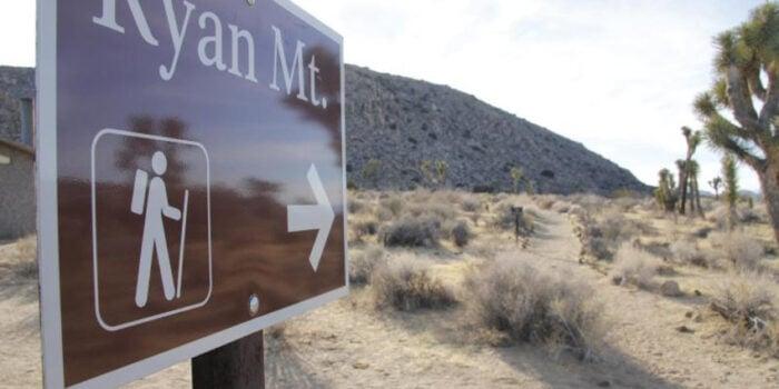 Get Injured or Die in the National Parks