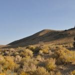Benefits Of Boondocking: You Never Know What You'll Find