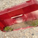 Keep Moss From Growing In Your Taillights