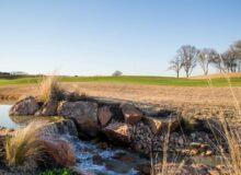 Visit The New Texas Rangers Golf Club Near Dallas