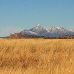 Visit Sky Island Country In Patagonia, Arizona