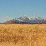 Visit Sky Island Country In Patagonia, Arizona