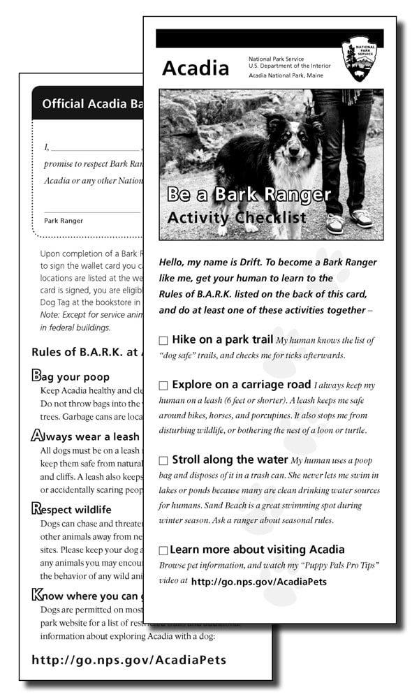 camping dogs BARK Ranger Program