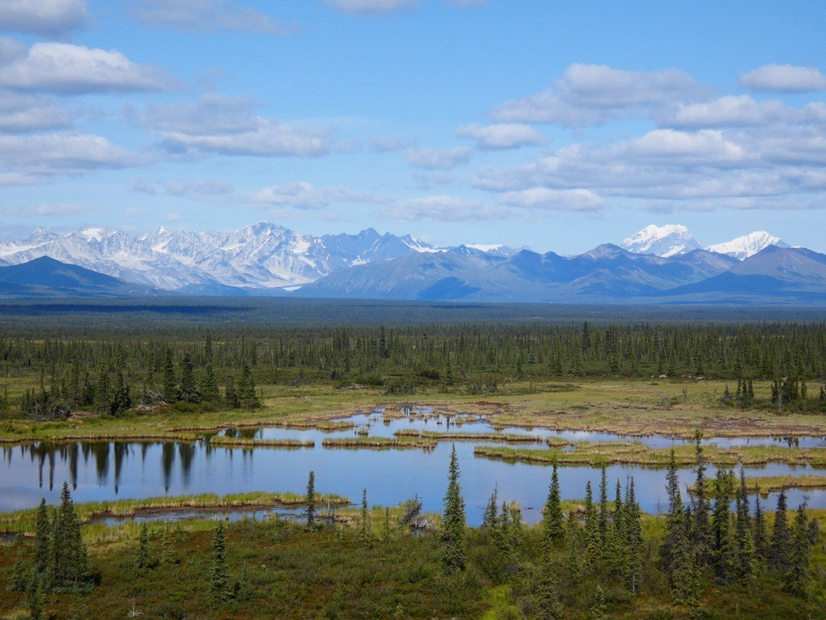 Exploring the Denali Highway